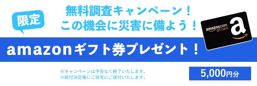 無料調査キャンペーン!amazonギフトカードプレゼント!
