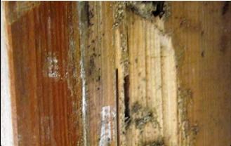 柱の腐食で住宅の強度が低下